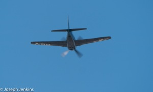 2020 10 3 F8F Bearcat Flyover0540